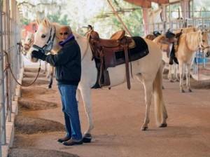 Dude Ranch Adventures – Cat Spring, TX