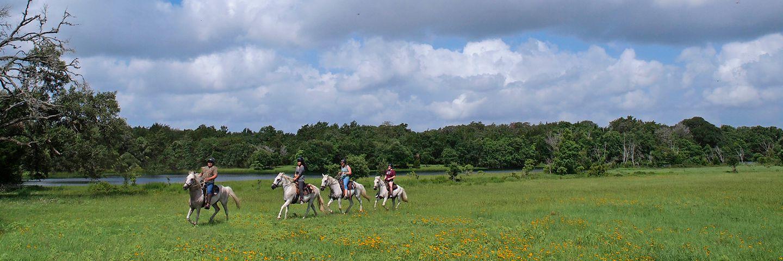 Texas Ranches - Horseback Riding near Houston