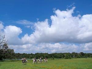 Horseback Riding in Texas