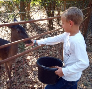 The Crotty Family Spends Labor Day at Texas Guest Ranch