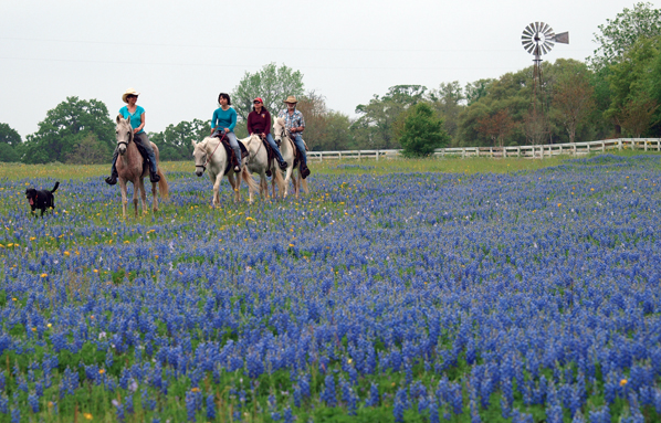 Our Texas B&B Selected as Wheel of Fortune Prize