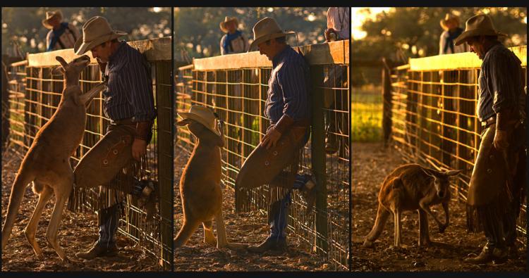 """Cowboys and Kangaroos"" Photoworkshop at BlissWood B&B"