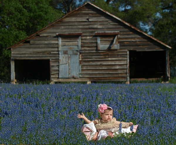 Bluebonnets in bloom at Blisswood