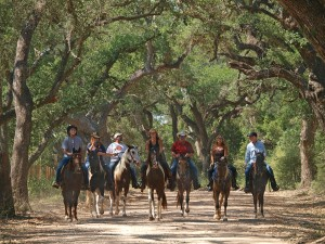 BlissWood B&B Ranch: Corporate Retreats Houston Style