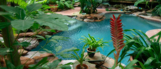 Tropical Getaways in Texas at the Oasis