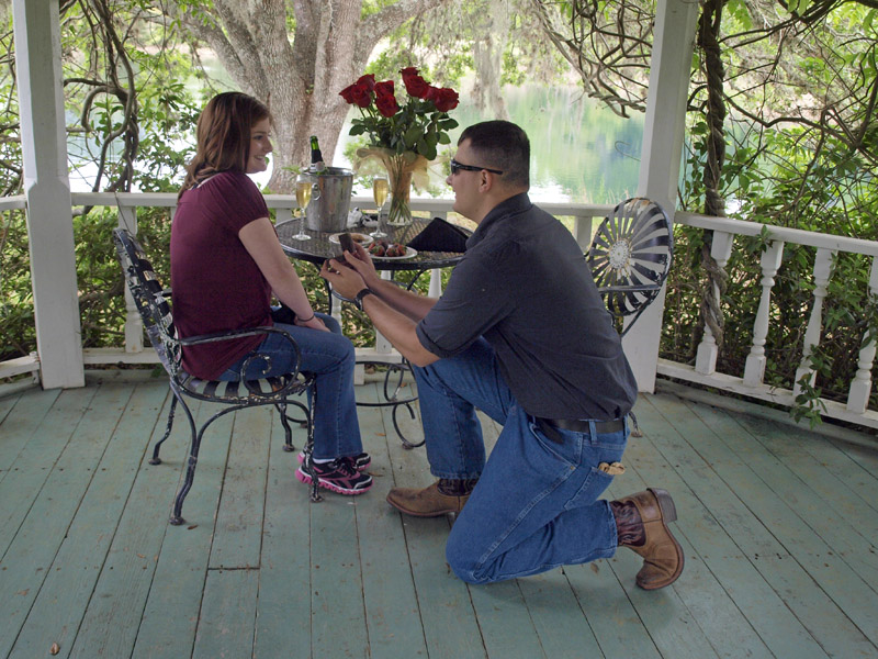 Bliss at BlissWood: A Unique Texas Proposal