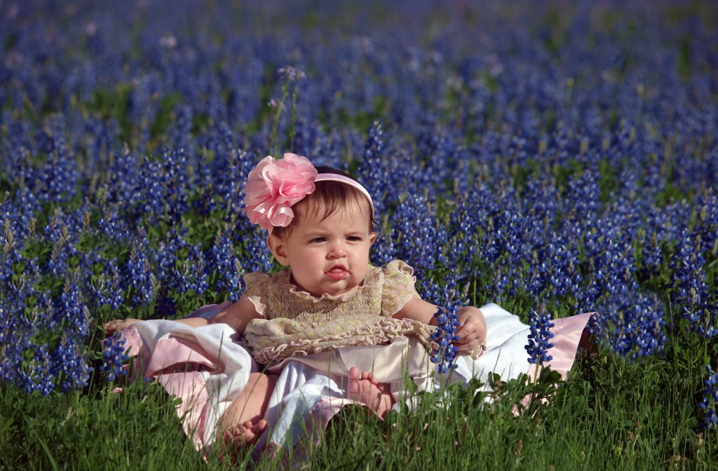 Bluebonnets in Bloom at BlissWood!