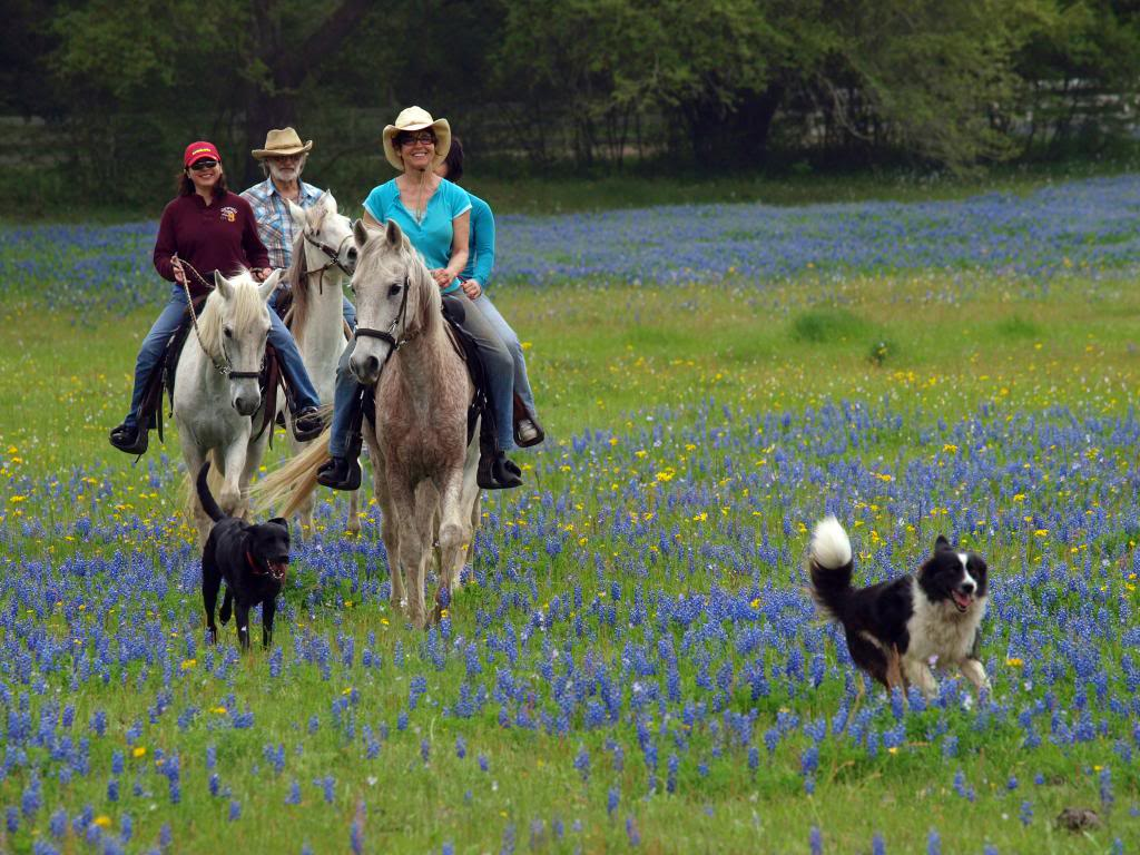Authentic Texas Getaway : Horseback Riding Vacations