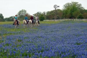 Dude Ranch near Houston