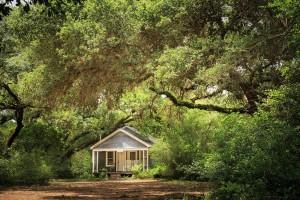 Texas Cabin Rentals