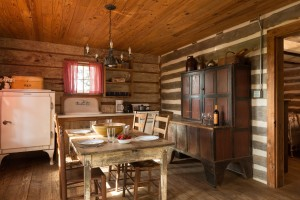 Log cabin kitchen view