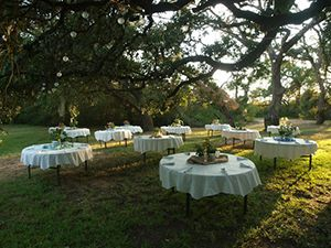 Wedding Venue near Houston - Outdoor Wedding