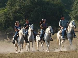 texas-horseback-riding-group