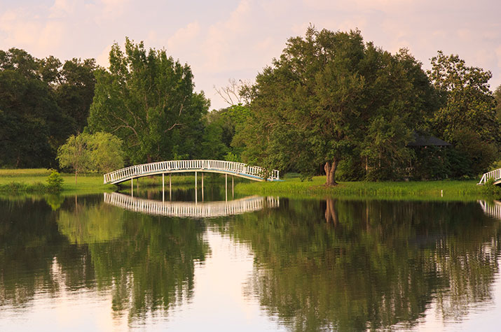 A photo of a pond at Blisswood