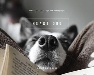 heart-dog