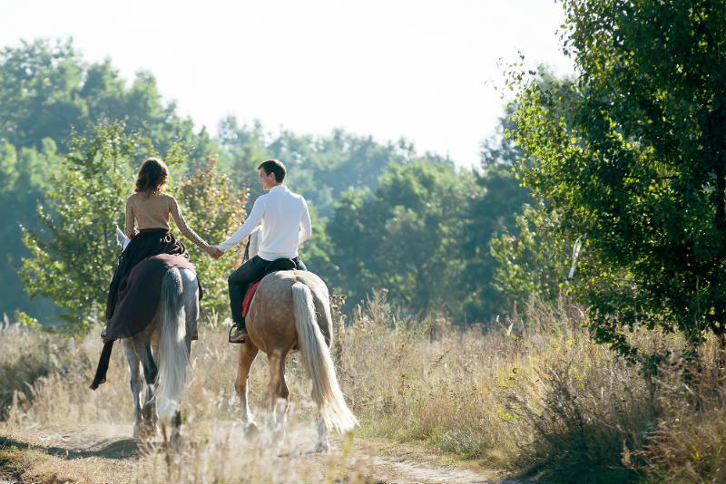 Marriage Proposal for the Horse-Loving Couple