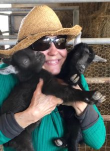 Baby goats at Texas Bed and Breakfast