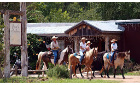 Top Reasons to Choose Our Texas Bed and Breakfast for Your Next Family Vacation