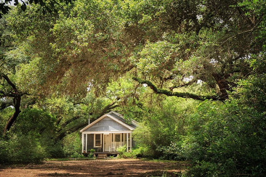 A rental house in Texas, in the distance with trees surrounding it