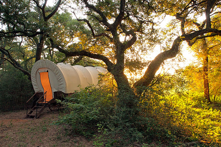 The Blisswood Ranch covered wagon sitting under a tress