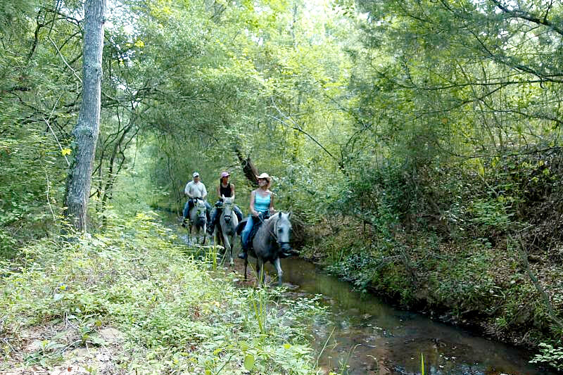 Horseback riding in the creek at Texas bed and breakfast ranch