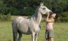 Texas Ranch Retreat for the Solo Traveler