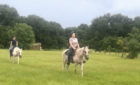 Horseback Riding Ranch Near Houston | Ride A Paso Fino Horse