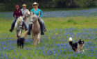 Book a 500-Acre Ranch for Your Family Reunion in Texas
