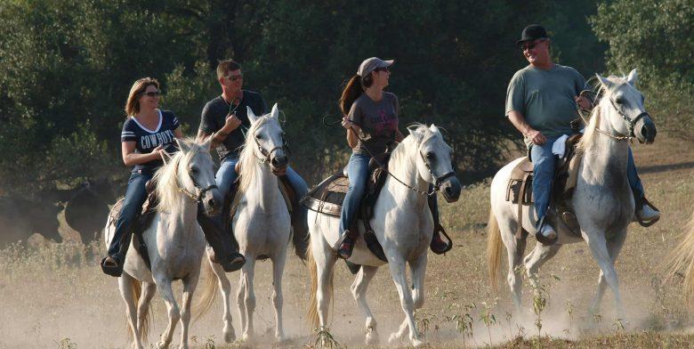 Multiple riders on Horseback