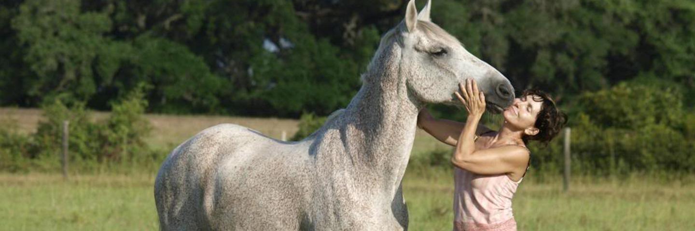 Horseback Riding Near Houston, Texas