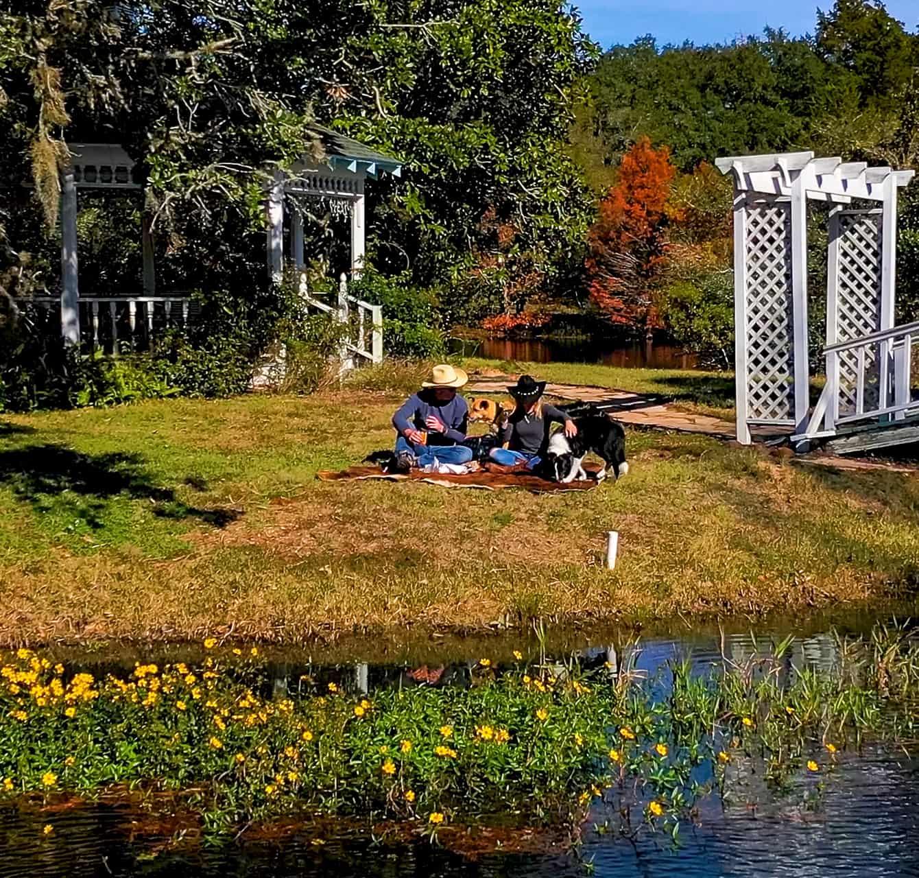 Couple having a romantic picnic at the lake