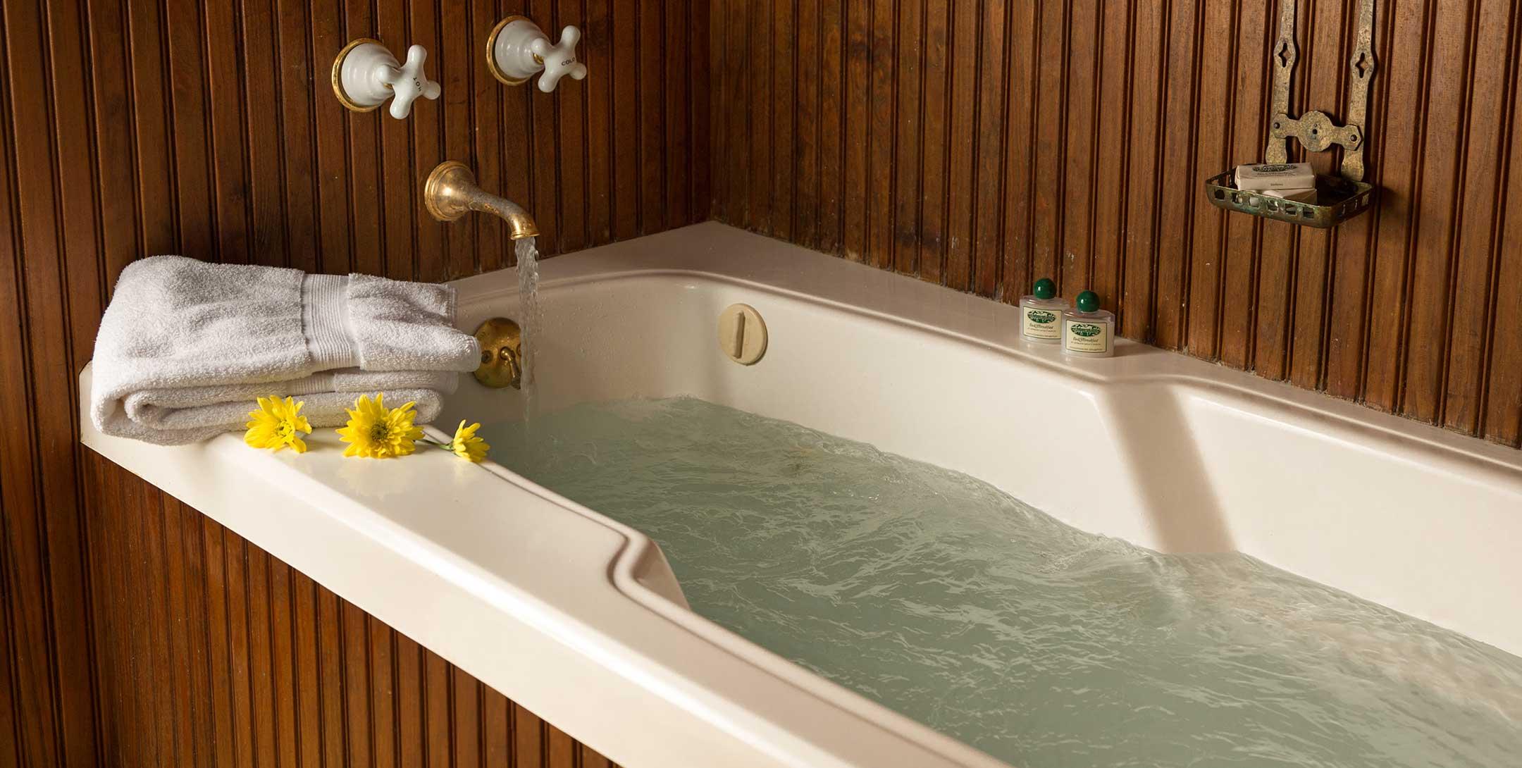 Lehmann House bath