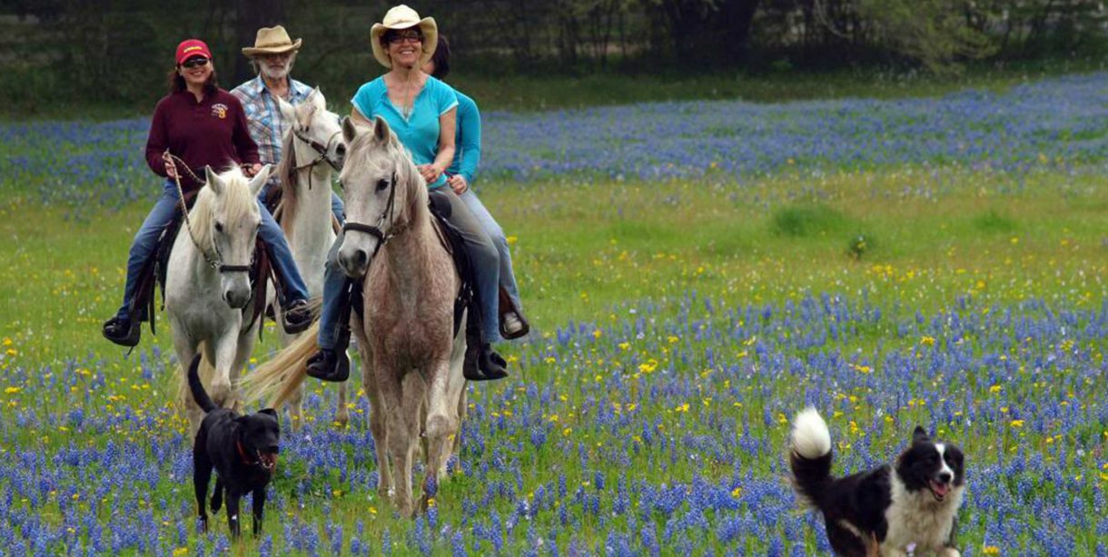 People riding horses through a meadow with dogs