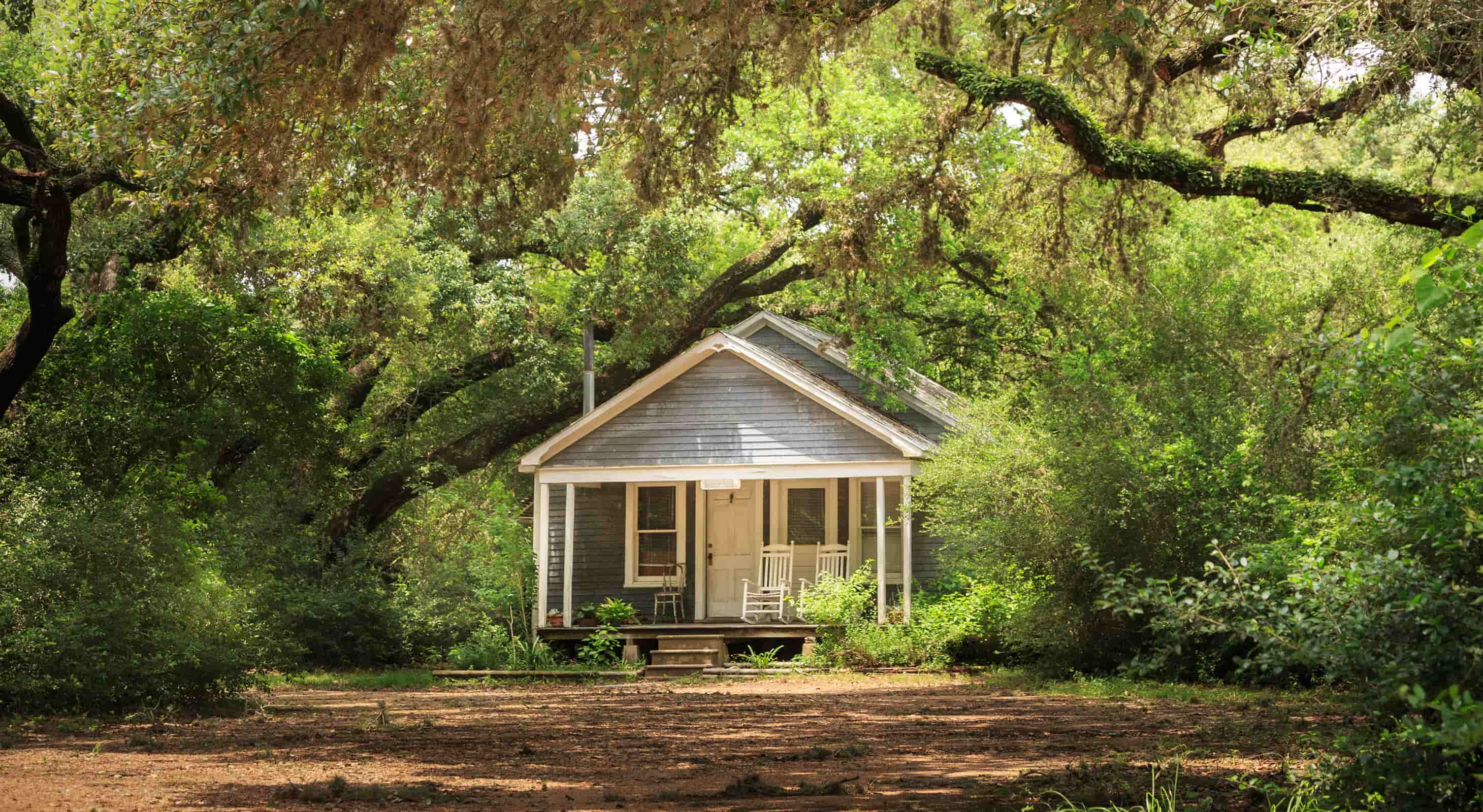 Exterior view of the Bluebonnet Bungalow surrounded by trees