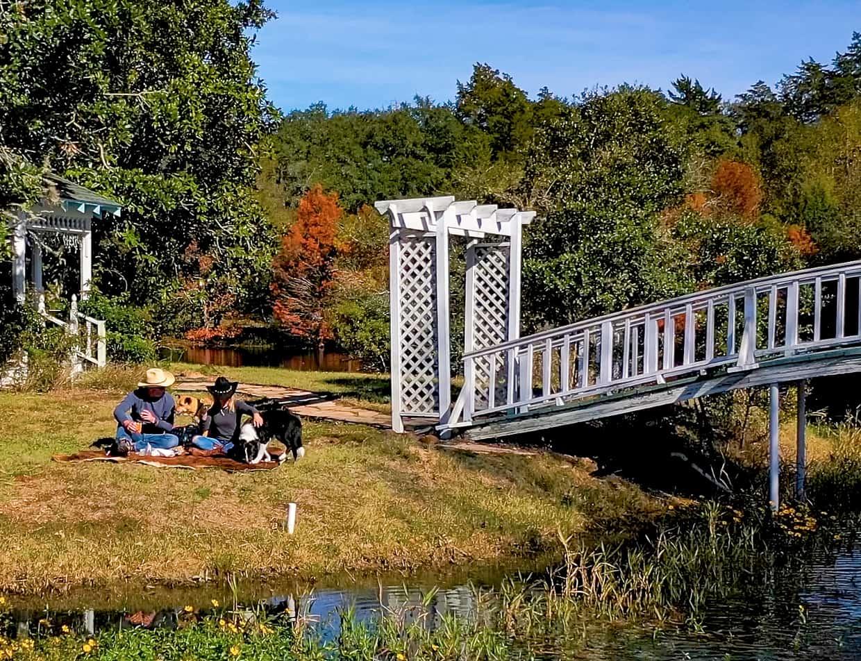 couple on romantic picnic at Enchanted Lake