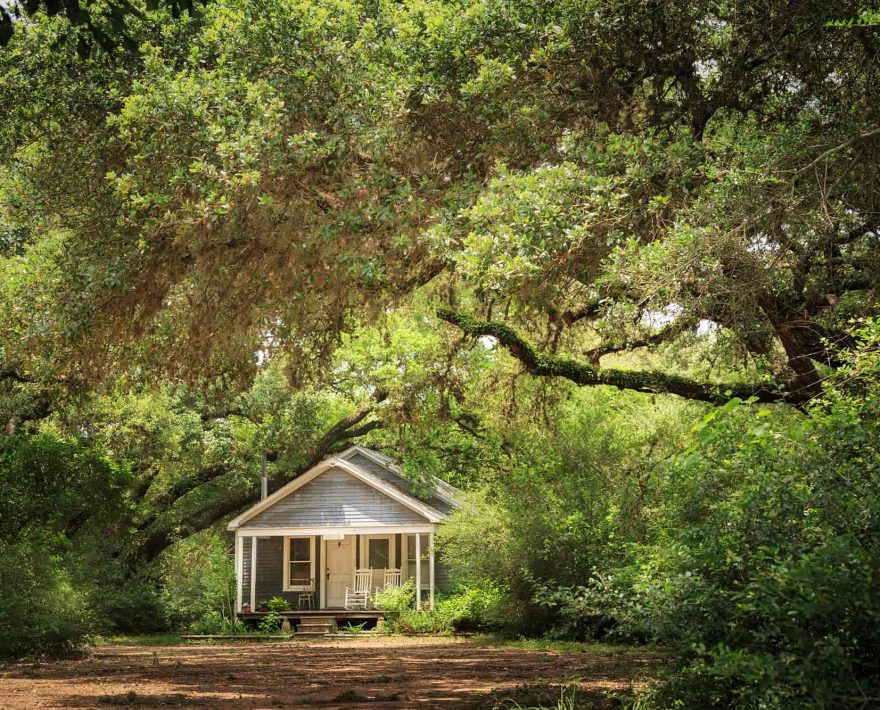 Bluebonnet Bungalow surrounded by green trees