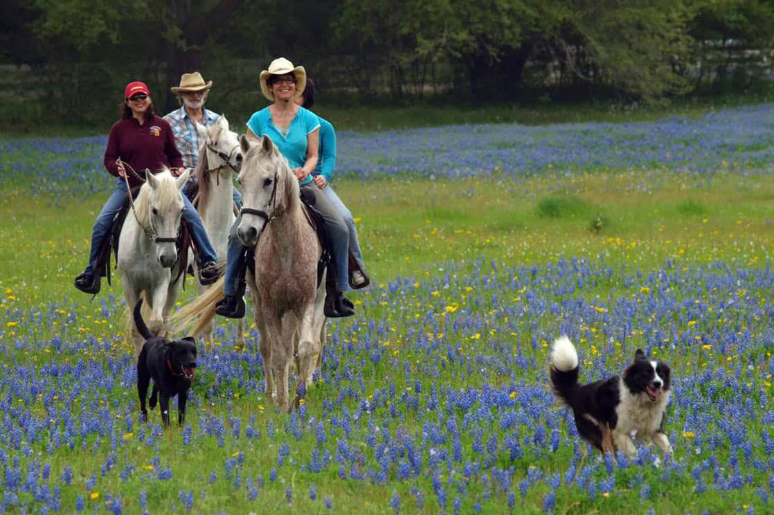 Horseback riding in Texas with collie dog leading the way