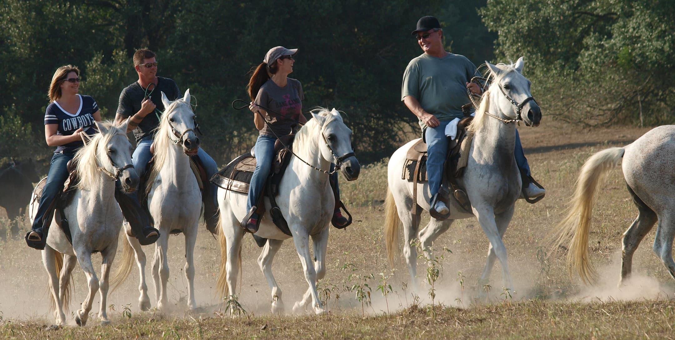 horseback riding group at the ranch