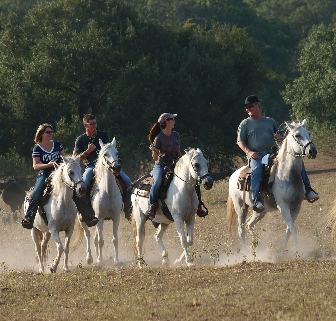 Horseback riding team building activity