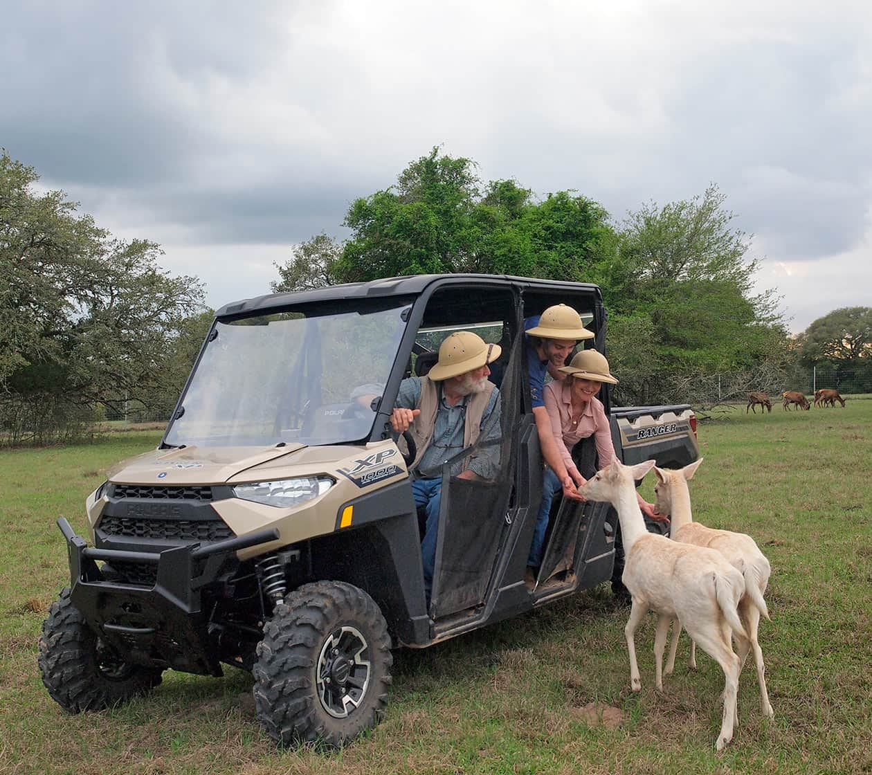 Exotic animal ranch tour in a vehicle