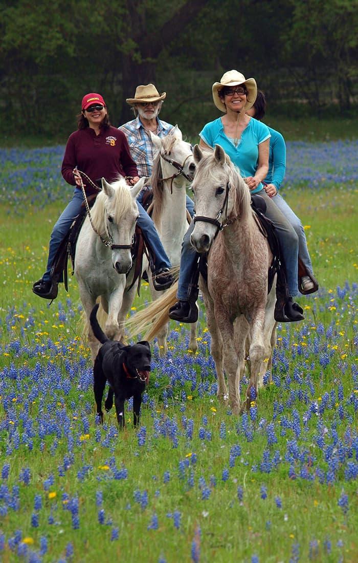 group on a horseback ride through a grassy meadow