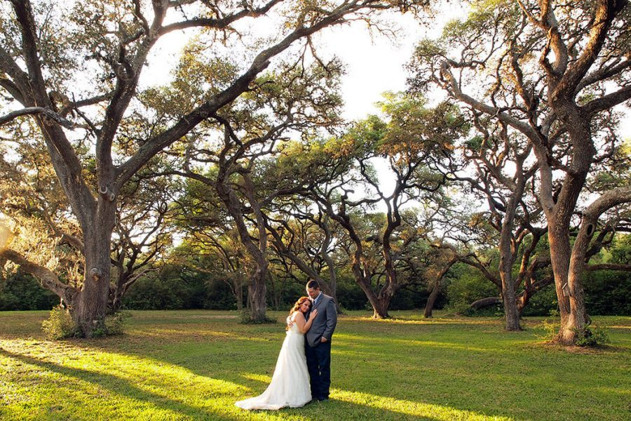 Bride and Groom embrace under the trees