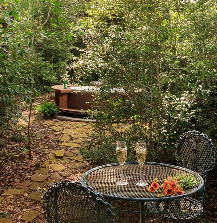 Mystic Woods Outdoor hot tub with wine