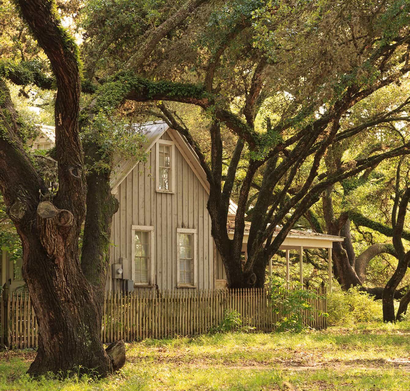 Exterior of Texas Farmhouse with Trees