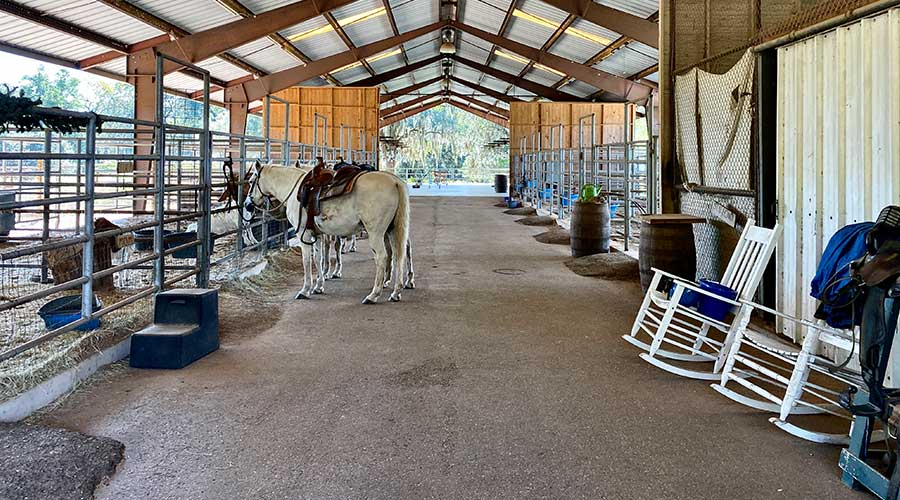 Horse stables for boarding your own horse in Texas