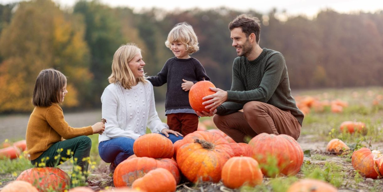 happy family picking pumpkin in patch
